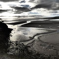 P1190887 (holloway.john531) Tags: sunsets sand beaches seashore rocks water seagulls