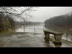 Longing for spring (Beat09) Tags: germany deutschland sachsen elbe elbtal elbufer dresden pillnitz pillnitzcastle schlosspillnitz hdr vividhdr winter fluss river bench bank