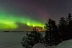 northern lights (katrinlillenthal) Tags: landscape finland nature nopeople northernlights outdoor night stars winter snow trees astronomy galaxy cold