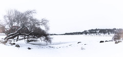 Frozen Stockholm (Syed Ali Warda) Tags: artistic architecture architectural art stockholm panaroma panaromic building buildings cityscape canon clouds dramatic darkclouds frozen balticsea baltic sea excellent europe exciting nordic sweden history heritage historical landscape landmark monument outdoor observing outside picture photo peace water white snowfall snowing frozenwater city sky snow boat overcast lake frozenlake
