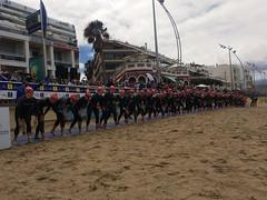 Copa Europa Triatlón ETU Gran Canaria Clasificatorio Campeonato España Triatlón Olímpico 7
