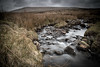 21st March 2018 (Rob Sutherland) Tags: moor fell corney cumbria west cumbrian lakedistrict lakes lakeland flowing river annas stream beck burn rocks stones rock stone reed reeds grey flat bleak murky sinister dark upland rural countryside