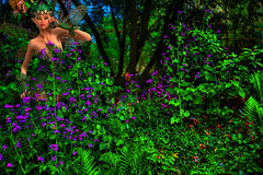 Fairy of the woods (Marco Trovò) Tags: marcotrovò canon5d hdr ameno novara italia italy fiori flowers bosco woods forest fantasy