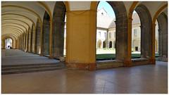 Abbaye de Cluny (abac077) Tags: abbaye abbey cluny cloitre closter bourgogne burgundy 2017 saôneetloire