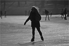 Ice Queen (Hindrik S) Tags: skating ride reedride silhouet silhouette sylhûet schaatsen iis ijs eis schlittschuhlaufen prinsentuin prinsetún shadow shade skaad schaduw schatten sport winter liwwadden ljouwert leeuwarden gracht grêft stadsgracht stedsgrêft lf2018 kh2018 tamron tamronaf16300mmf3563dillvcpzdmacrob016 tamron16300 2018 kulturelehaadstêd2018 sonyphotographing sony sonyalpha a57 α57 slta57 230mm f63