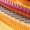 Piano Insights: some red and wires (2/4) (jaeschol) Tags: europa flügel giselahorat giselahorattrio kontinent musik musikinstrument schweiz suisse switzerland grandpiano