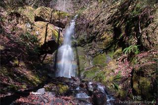 Waterfall 7428