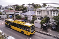 Brooklyn - Ohiro Road (andrewsurgenor) Tags: transit transport publictransport nzbus gowellington electric trackless trolleybus trolleybuses wellington nz streetscenes bus buses omnibus yellow obus busse citytransport city urban newzealand