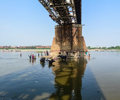 Bottom view of old bridge in Agra, India (phuong.sg@gmail.com) Tags: architecture bridge building built concrete connection construction day engineering highway horizontal infrastructure landscape largest longest metal modern nature outdoor overcast overpass perspective river riverbank riverside road section steel structure tourism transit transport transportation travel urban view water waterfront waterside waterway