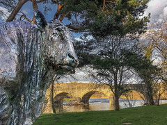 73/365 - Mineral (Bull in the Park) (Nikki M-F) Tags: bull sculpture art park bridge builthwells river wye