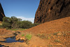 Stream Gorge (syf22) Tags: australia yulara outback katatjuta walpagorge downunder aussie oz theolgas valleyofthewinds rock formation sandstone gap cleft clough canyon arroyo clove glen fissurevpass ravive steep rocky walls open plain sunny hot aboriginal native stream water flow