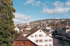 Zurich, Switzerland (wrenee.com) Tags: 2017 film europe olympusstylusepic zurich switzerland