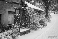 Sud sous la neige (pilou.basco) Tags: neige tree snow white banc vide empty seat winter hiver sud france french canon eos 6d 50mm noiretblanc blackandwhite nb bw monochrome 2018