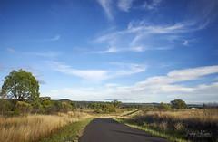 Big Sky (Lesmacphotos) Tags: olympus australia bigsky sky blue clouds road rural farm outback cloud nsw beauty pretty summer native trees gums