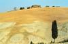 1988 Italy // Wandern in der Toskana // von Greve nach San Donato in Collina (Postkarte) (maerzbecher-Deutschland zu Fuss) Tags: 1988 maerzbecher italien italia italy toskana toscana hiking trekking wandern tuscany poatkarte