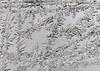 DSC_7823-2 (harynjk23) Tags: frostwork winter freez jégvirág tél macro nikon d5300 extension tubes