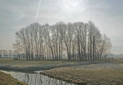 those freezing days are over (kelsk) Tags: vockestaertpolder polder delft kelskphotography zuidholland holland nederland netherlands texture textuur bomen trees frost vorst winter land water lucht sky