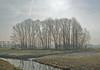 those freezing days are over (kelsk) Tags: vockestaertpolder polder delft kelskphotography zuidholland holland nederland netherlands texture textuur bomen trees frost vorst winter land water lucht sky
