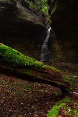 """Mossy Falls"" (the_lowe_life) Tags: kentuckywaterfalls log green color photography d600 nisi nikkor 2470 nikon kentucky explore hike gorge sandstone redrivergorge rrg longexposure waterfall"