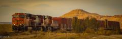 BNSF (nebulous 1) Tags: bnsf burlingtonnorthern santafe train trains railroad tracks cars railcars engine locomotive nikon nebulous1 glene newmexico nm6