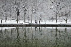 Mirror  Sailboat Pond NYC (rverc) Tags: centralpark newyork sailboatpond mr