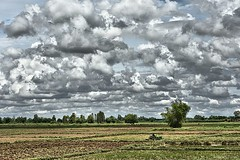 Plowing the rice fields. (Κώστας ex Tungmay) Tags: landscape thailand ricefields tractor plowing sky clouds