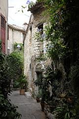 Le jardin dans la ruelle - couleur (bd168) Tags: architecture été france saintpauldevence plantes plants gardenjardin fujifilmxt10 xf27mmf28