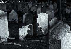 london-8-220218 (Snowpetrel Photography) Tags: london olympusem5markii olympusm1240mmf28 blackandwhite cemeteries graves gravestones monochrome shadows streetphoto streetphotography tombstones urbanlife winter england unitedkingdom