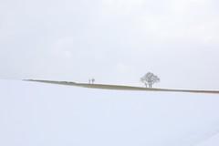 Winter scenery (Xtraphoto) Tags: winterlandschaft landschaft landscape feld field winter baum bäume trees tree