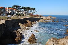IMG_7622 (mudsharkalex) Tags: california pacificgrove pacificgroveca