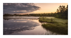 A hint of mist on the lake (Andreas Larzon Photography) Tags: calmwater cloudy grass landscape landscapephotography mirrorwater mist misty nikond7200 oragnesky pond reflections serene shoreline sigma1835mmf18dchsmart sky summer sunset sverige swamp sweden tarn tåme västerbottenslän woodland