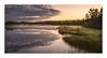 A hint of mist on the lake (Andreas Larzon Photography) Tags: calmwater cloudy grass landscape landscapephotography mirrorwater mist misty nikond7200 oragnesky pond reflections serene shoreline sigma1835mmf18dchsmart sky summer sunset sverige swamp sweden tarn tåme västerbottenslän woodland