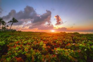 Glorious Sanibel Sunrise