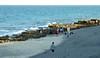 20180218_30 Coral Cove Tequesta Florida USA (FRABJOUS DAZE - PHOTO BLOG) Tags: coralcove jupiter palmbeachcounty pbc fl fla florida sunshinestate usa unitedstates america amerikka yhdysvallat ranta beach