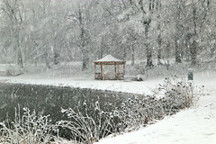 Gazebo in Winter (chantsign) Tags: gazebo winter snow snowing bridge sign path weeds water pond lake bench