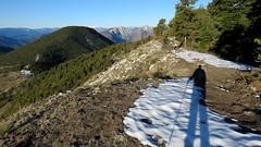 Ombre matinale (bernard.bonifassi) Tags: bb088 06 alpesmaritimes 2018 mars thiery counteadenissa eu canonsx60 ombre