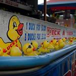 Pick A Duck thumbnail