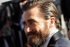 JAKE GYLLENHAAL 01 (starface83) Tags: actor festival cannes portrait film actress jake gyllenhaal