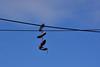 Shoes (johnmoffatt2000) Tags: lakeunion water gasworkspark
