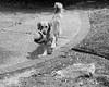 game face (fallsroad) Tags: rubye dog goldenretriever assistancedog servicedog epilepsy seizureresponsedog seizures tulsaoklahoma blackandwhite bw monochrome littledoglaughednoiret
