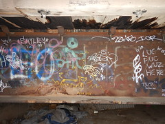 Spays ACS - Smiley - Tymx (Railroad Rat) Tags: usa america united states colorado graffiti freight train vagabond transient hobo railroad tracks yard switch steel moniker art all colours beautiful acab cutty dumpster dive diving camping hopping riding bombing pieces burners