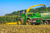 JOHN DEERE 8800i Forage Harvester (martin_king.photo) Tags: johndeere johndeere8800i forageharvester silage mais cornsilage autumnwork silage2017 extension fields agriculture huge all everything servis tschechische republik powerfull martin king photo machines strong agricultural greatday great czechrepublic welovefarming agriculturalmachinery farm workday working modernagriculture landwirtschaft workeveryday tschechischerepublik martinkingphoto machine machinery hawe trelleborg trelleborgtires tires photographer photography