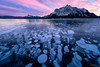 Pink Bubbles (Hilton Chen) Tags: frozenmethanebubbles canadianrockies sunrise winter alberta colorclouds abrahamlake canada landscape snow mountmichener ice clearwatercounty ca