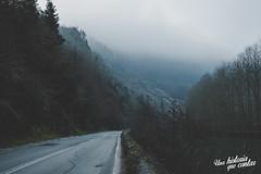 Road (Josemi - Una historia que contar) Tags: road carretera fog niebla bosque forest navarra etxalar montaña paisaje land naturaleza nature nube cloud nubes trip roadtrip fujifilm xt2 fujixt2 23mm
