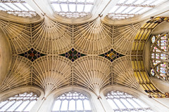 Ceiling of nave (DSLEWIS) Tags: bath england britain uk roman architecture abbey bathabbey cathedral church eglise iglesia churchofengland anglican episcopal gothic