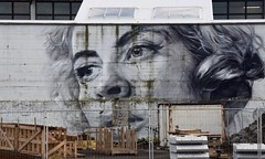 Reykjavik, Iceland (james.mason01) Tags: reykjavik iceland graffiti city urban