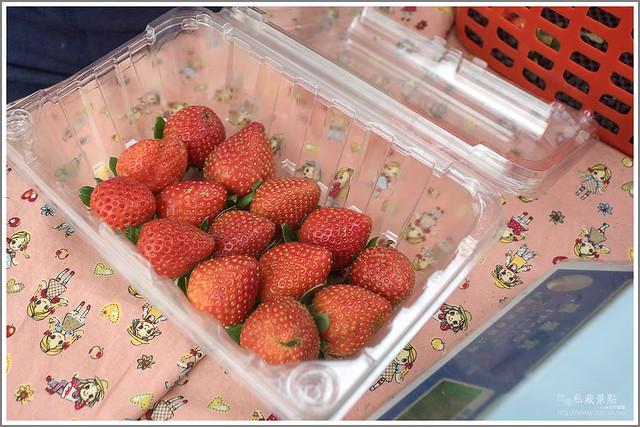 善化草莓 來去晴空農場找無農藥栽種的草莓 (32)