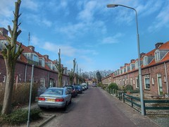 Nassaustraat (sander_sloots) Tags: doesburg nassaustraat woonwijk housing district streetlamp lamppost street houses row rijtjeshuizen dakkapellen lantaarnpaal philips fgs104 armatuur lantern road weg straat straatverlichting cars autos gardens tuinen trees bomen lampadaire lichtmast