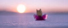10/52 - Recognition (Reiterlied) Tags: 1835mm angle bunny butterfly d500 dslr fabuland lego legography lens minifig minifigure nikon photography reiterlied sigma stuckinplastic sunset toy wide winter