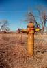 mills firehydrant 2 (HOOVER14) Tags: fire hydrant mills wyoming kodak brownir target 620 box camera ektar 100 color film